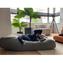 Hondenbed basalt large