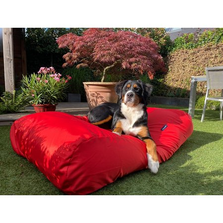 Dog's Companion® Hondenbed rood vuilafstotende coating extra small