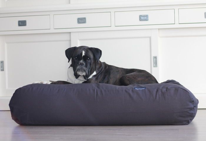 Dog's Companion® Hondenbed antraciet extra small