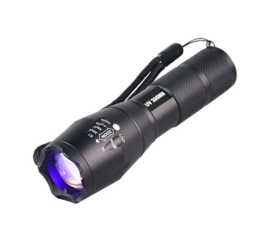 UV-Taschenlampe