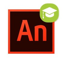 Adobe Adobe Animate/Flash Cursus