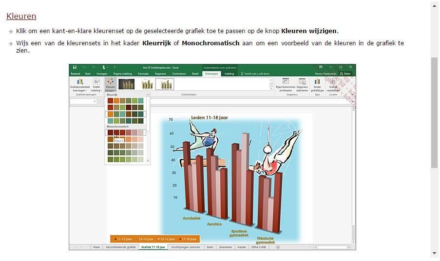 Microsoft  Microsoft Office Excel E-Book Cursus