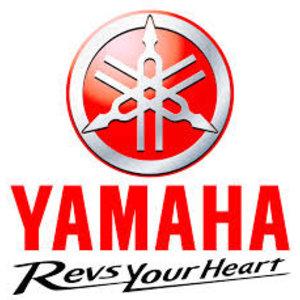 Yamaha Tilt Rod Assy
