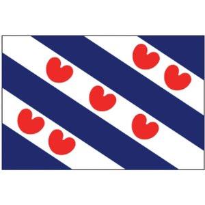 Talamex Friese vlag