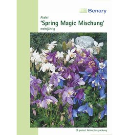 Benary Akelei Spring Magic® Mix, mehrjährig