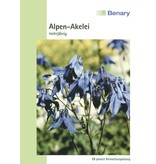 Benary Alpen-Akelei Mehrjährig