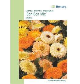 Benary Ringelblume Bon Bon Mix, einjährig