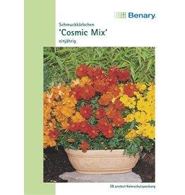 Benary Schmuckkörbchen  Cosmic Mix, einjährig