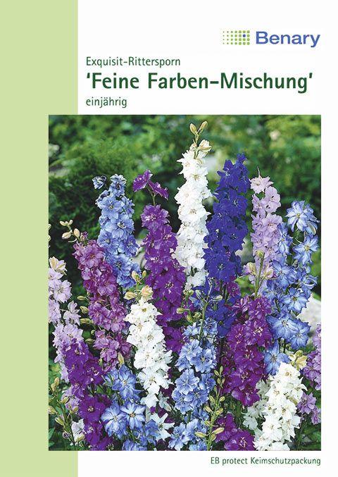 Benary Exquisit-Rittersporn Feine Farben Mischung, einjährig