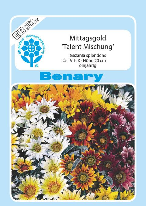 Benary Mittagsgold Talent® Mix, einjährig