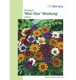 Benary Gazanie Mini-Star® Mischung, einjährig