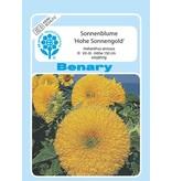 Benary Sonnenblume Hohe Sonnengold, einjährig