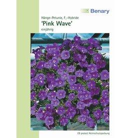 Benary Petunie WonderWave® F1 Pink, einjährig