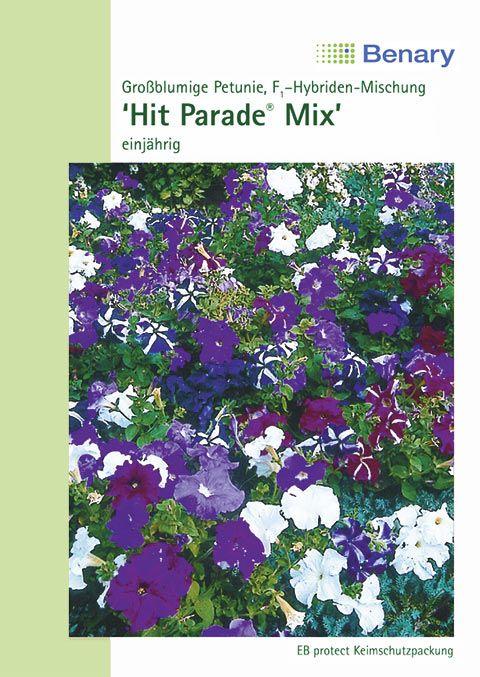 Benary Petunie Hit Parade® F1 Mix, einjährig