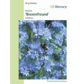 Benary Phacelie Bienenfreund, einjährig