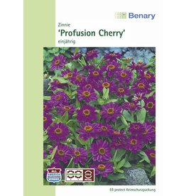 Benary Zinnie Profusion Cherry, einjährig