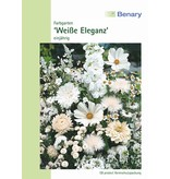 Benary Blumenmischung Farbgarten Weiße Eleganz, einjährig