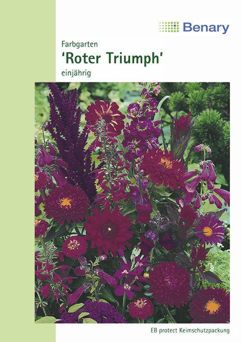 Benary Blumenmischung Farbgarten Roter Triumph, einjährig