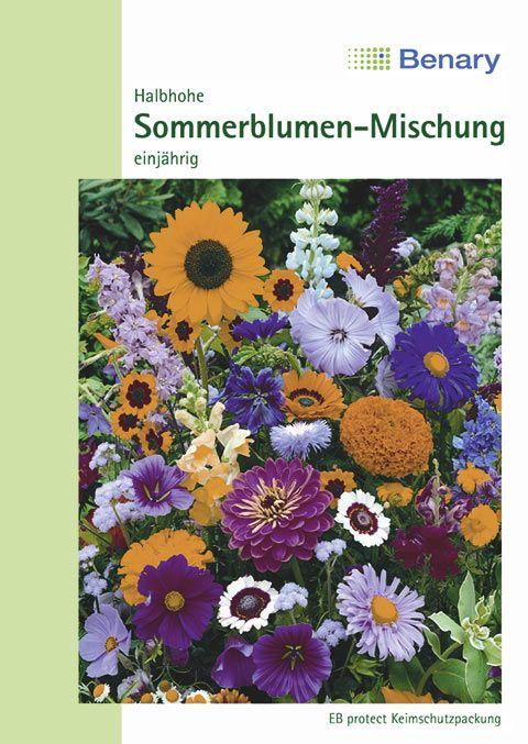 Benary Blumenmischung Halbhohe Sommerblumen-Mischung, einjährig