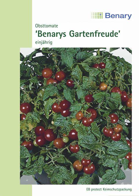 Benary Obsttomate Benarys Gartenfreunde