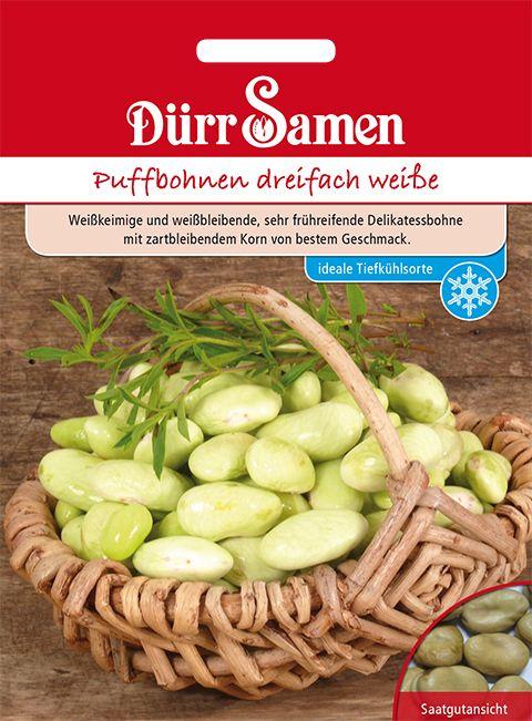 Dürr Samen Puffbohnen  Dreifach Weiße