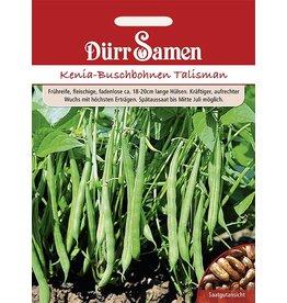 Dürr Samen Buschbohnen  Talisman