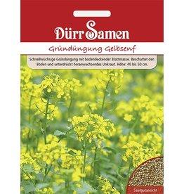 Dürr Samen Gründüngung  Gelbsenf 80 g