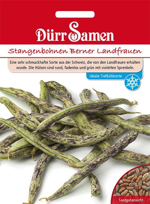 Dürr Samen Stangenbohnen  Berner Landfrauen