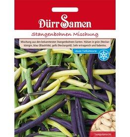 Dürr Samen Stangenbohnen  Mischung