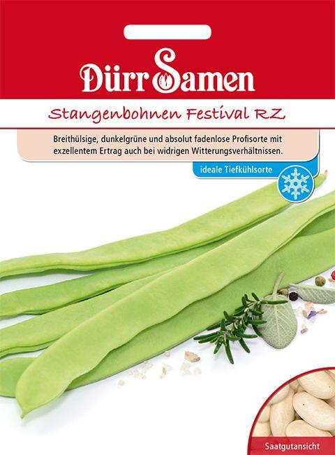 Dürr Samen Stangenbohnen Festival RZ