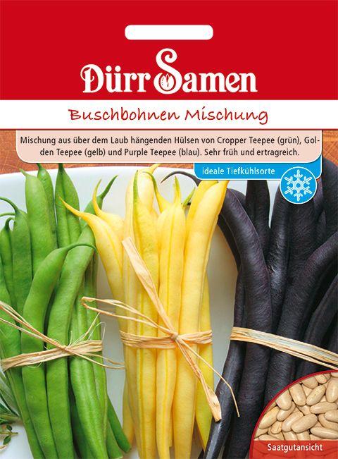 Dürr Samen Buschbohnen  Mischung