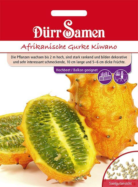 Dürr Samen Afrikanische Gurke/ Horngurke Kiwano