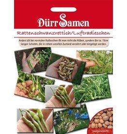 Dürr Samen Rattenschwanzradies/Luftradischen