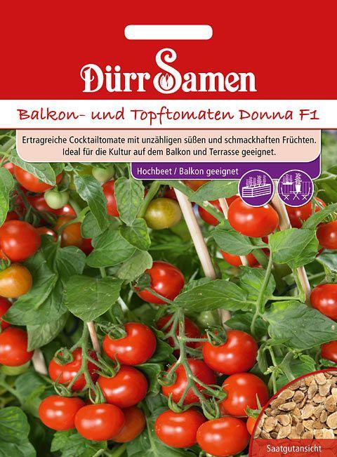 Dürr Samen Balkon- und Topftomaten Donna F1