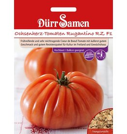 Dürr Samen Ochsenherz-Tomaten Rugantino RZ F1