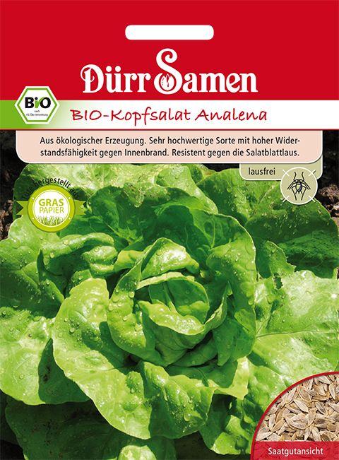 Dürr Samen BIO-Kopfsalat  Analena