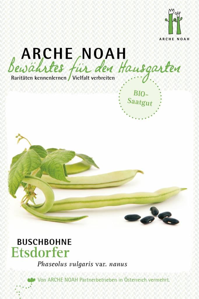 Arche Noah BIO-Buschbohne Etsdorfer