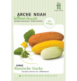 Arche Noah BIO-Gurke Russkaja