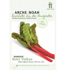 Arche Noah BIO-Mangold Roter Vulkan