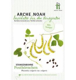 Arche Noah BIO-Stangenbohne Posthörnchen