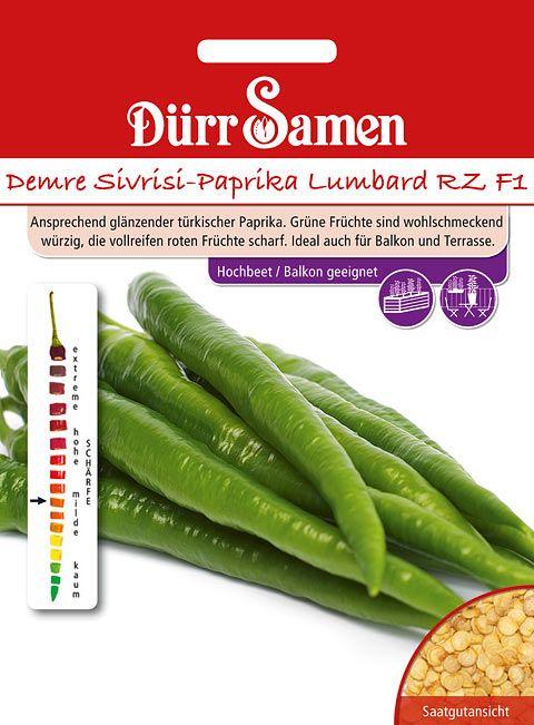 Dürr Samen Demre Sivrisi-Paprika Lumbard RZ F1