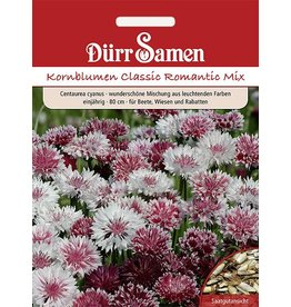 Dürr Samen Kornblumen 'Classic Romantic Mix', einjährig, 80cm
