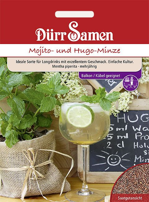 Dürr Samen Mojito- und Hugo-Minze