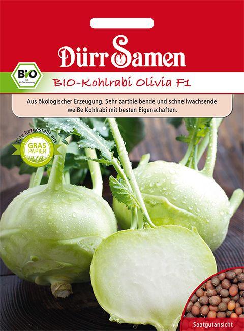 Dürr Samen BIO-Kohlrabi Olivia F1