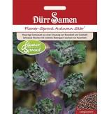 Dürr Samen Flower-Sprouts Autumn Star®