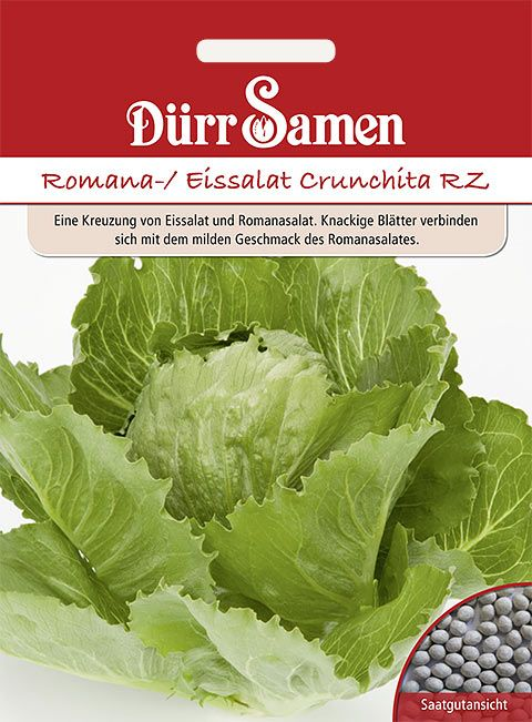 Dürr Samen Romana-/Eissalat Crunchita RZ