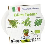 Aries BIO-Kräutertöpfchen Italienische Kräuter
