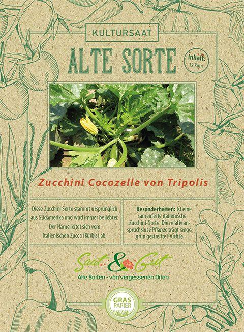 Saat & Gut BIO-Zucchini Cocozelle von Tripolis