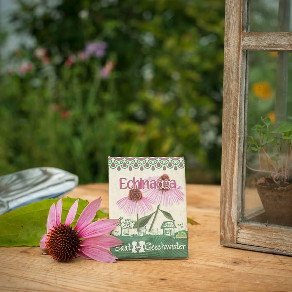 Stadtgärtner Saatgeschwister - Echinacea Sonnenhut
