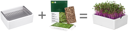 Anzuchtschale für Microgreens